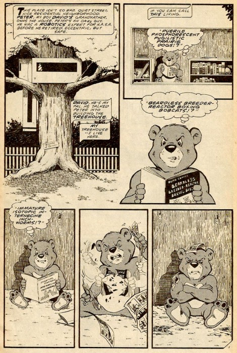 Boris the Bear #1