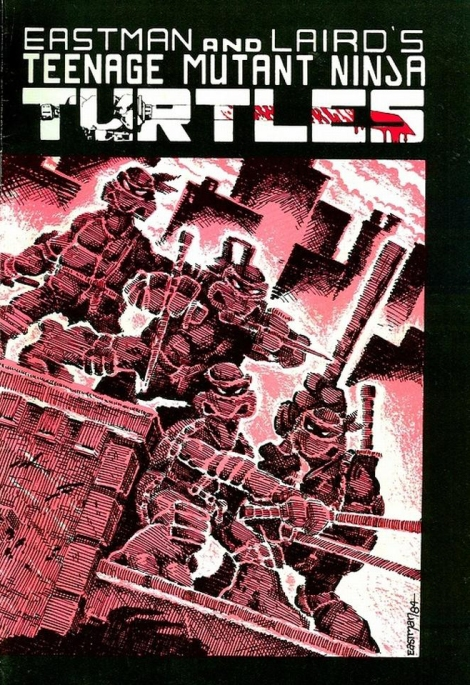 04 Teenage Mutant Ninja Turtles (vol. 1) #1 (May 1984)